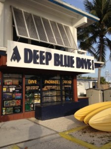 Coral Lagoon Boat Rentals Deep Blue Dive